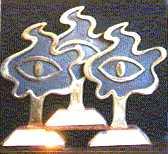 FEIP awards